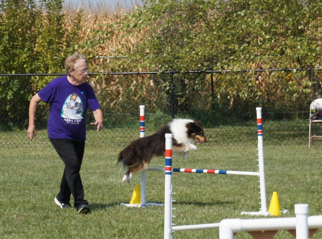 Competition Agility