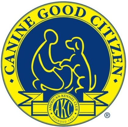 Canine Good Citizen  (CGC) Test