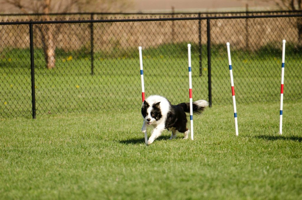 Introduction to Agility Weaves
